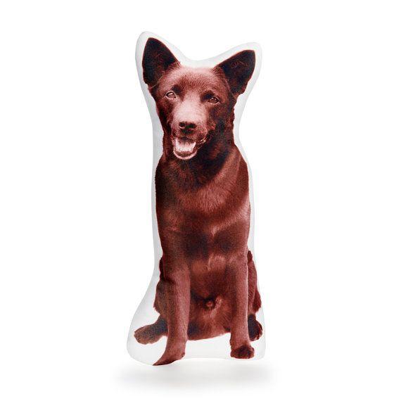 Kelpie Australian Dogs Australian Seller Australian shop