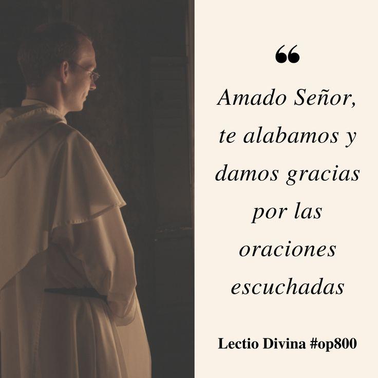 Amado Señor, te alabamos y damos gracias por las oraciones escuchadas #LectioDivina #op800 http://www.op.org/es/lectio/2016-10-24