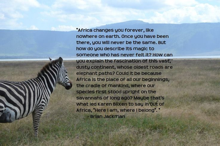 Africa changes you forever, like nowhere on earth. Once you have been there, you will never be the same.