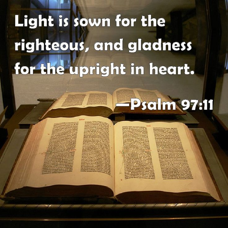 Image result for psalm 97:11 kjv