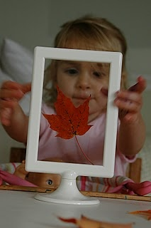 99 cent IKEA frame to display the perfect leaf from a nature walk.