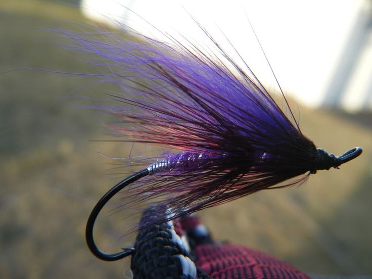 Tying Step by Step - Atlantic Salmon Flies | Fly Tying Bug Forum