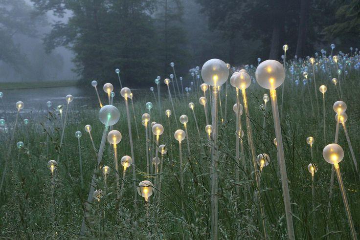 Bruce Munro  Инсталяция. Завораживающий светодиодный «эффект светлячков» охватывает 23 акра Лонгвудских Садов (Longwood Gardens) в Штате Делавэр. Для работы художник использовал более 27 тысяч светодиодных «маячков» на стеклянных стеблях. Но когда вы прогуливаетесь по зелёной чаще или берегу пруда в дневное время, вы можете не заметить ничего необычного. Масштабная инсталляция при солнечном свете выглядит как одуванчики, покрытые белым пухом. Но в сумерках начинается магия!