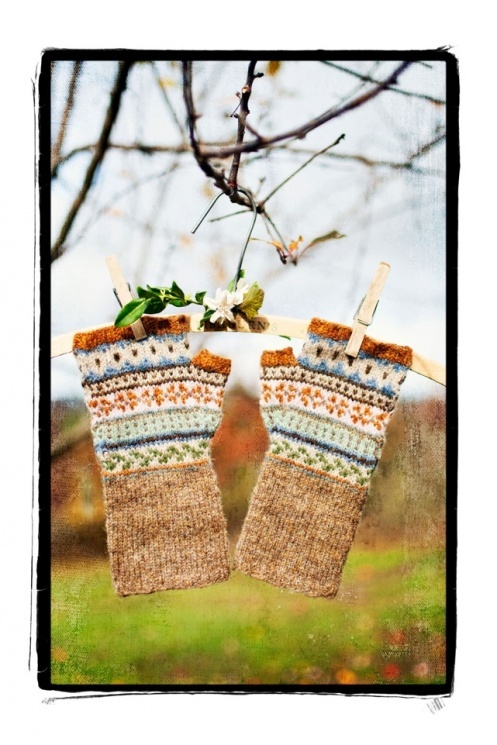 I want to see a pattern for these!!! - knit, but love the colors