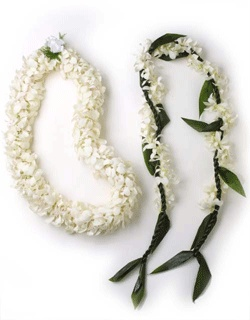 Pikake/plumeria lei for my chair, maile lei for him.