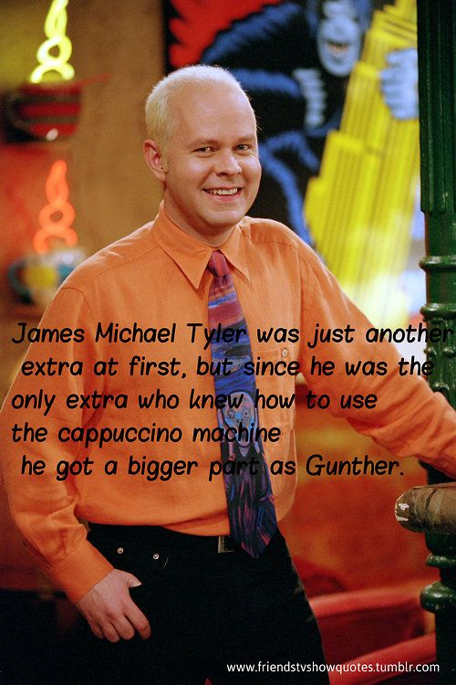 OMG I GET WHY THE ICE KING'S PENGUINS ARE NAMED GUNTHER!!! if the ice king was humming the tune to cheers in that episode then he must have watched friends!!!!