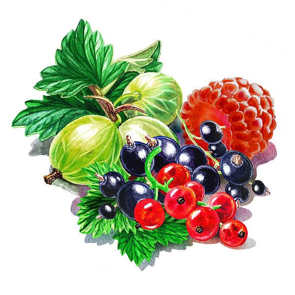 Many thanks to the art collector from Vancouver, WA for purchasing a framed print with this artwork Juicy Berry Mix http://irina-sztukowski.artistwebsites.com/featured/juicy-berry-mix-irina-sztukowski.html