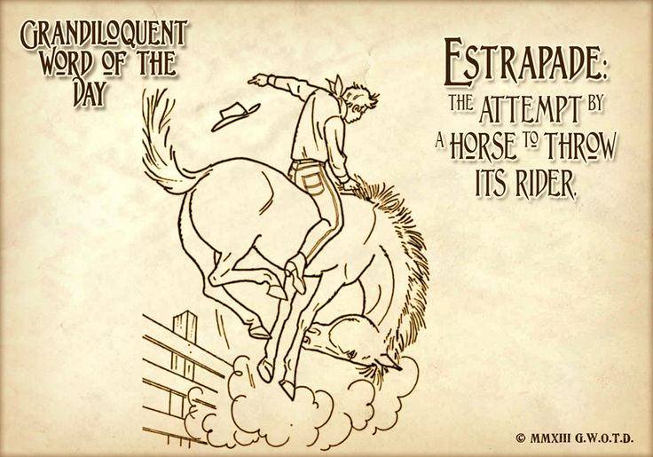 "Grandiloquent Word of the Day: Estrapade (AY•strah•PAHD) Noun: -A horse's attempt to dump its rider. -The action of a horse, when, to get rid of his rider, he rears, plunges, and kicks furiously. -The violent yerking of the hind legs which a horse makes when desirous of getting rid of his rider. Used in a sentence: ""My favorite video on YouTube is the one where the mean cat jumps on the dog's back and the dog goes into an insane fit of estrapade!"""