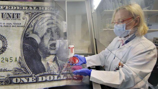 ¿Qué bacterias hay en los billetes de dólar y qué enfermedades provocan? - http://notofilia.com/2014/04/21/que-bacterias-hay-en-los-billetes-de-dolar-y-que-enfermedades-provocan/