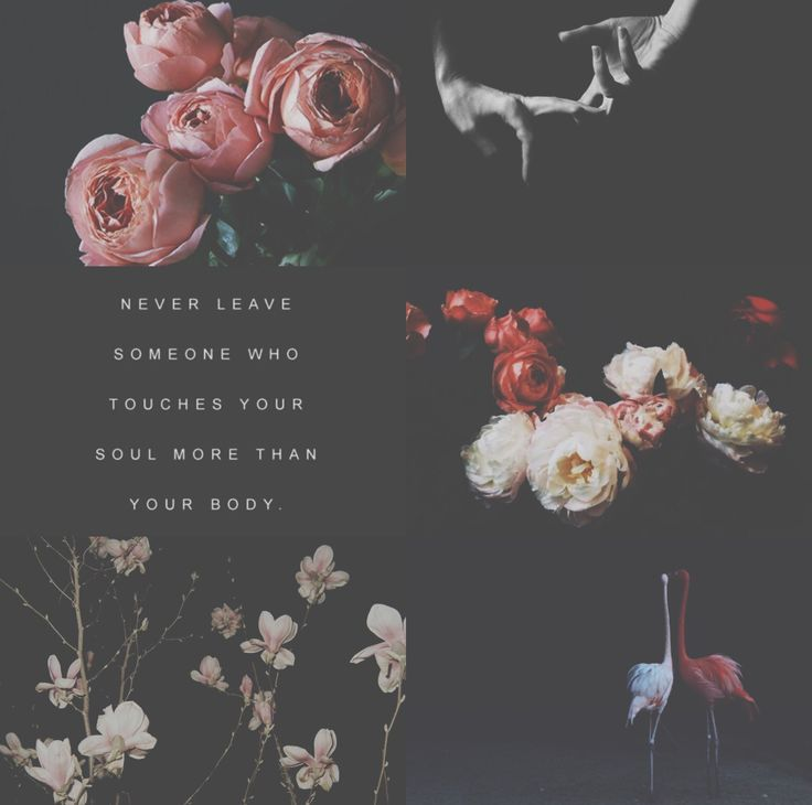 #flower - #black - #rule Aesthetic