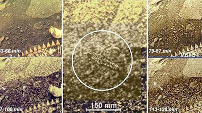 Planeta Vênus imagens secretas reveladas pela Russia  