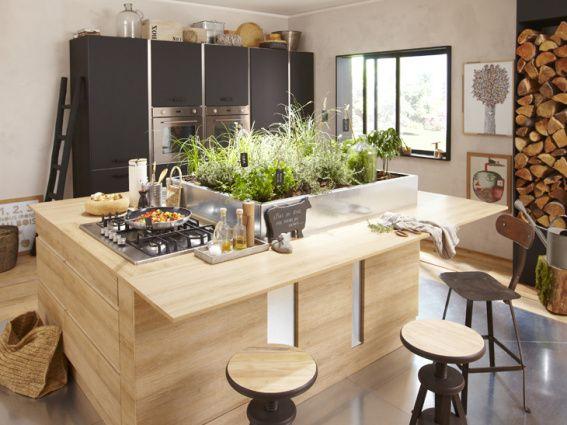 un potager dans la cuisine du futur