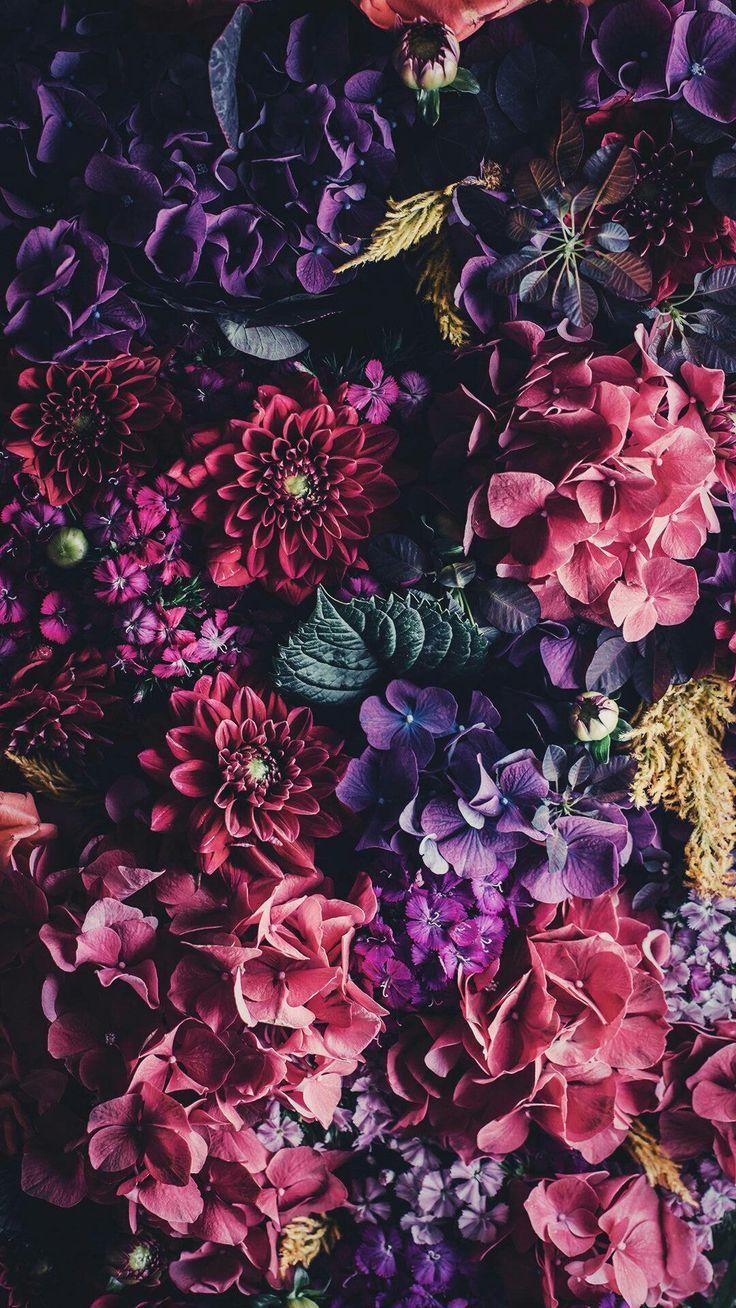 planodefundo | landscape in 2019 | Flowery wallpaper