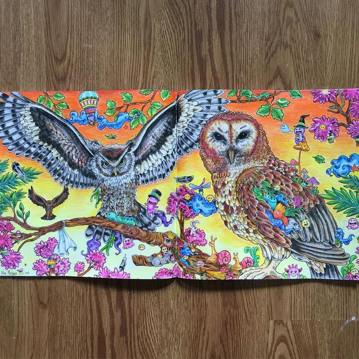 chilly & sick days call for colouring  thank  @eujingzeh  for this cool Christmas present finally completed it the first picture. ❤️ #adultcolouringbook #animorphia #artwork
