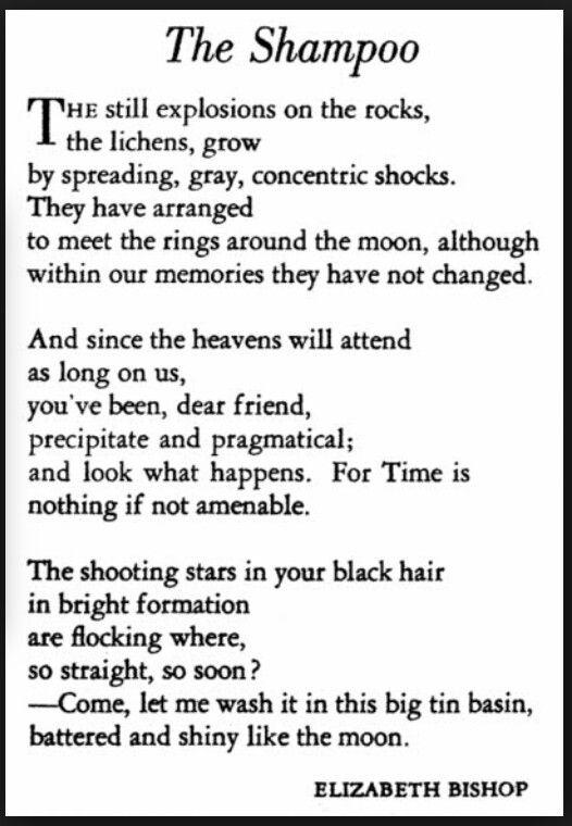 """""""The Shampoo"""", by Elizabeth Bishop."""