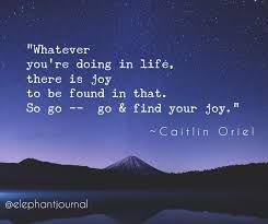 Image result for whatever you're doing in life there is joy caitlin oriel