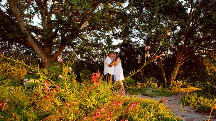 Kelly and Jody (Engagement). Engagement shoot of Kelly and Jody at the stunning Blydschap wedding boutique venue in Stellenbosch, The Perfec...