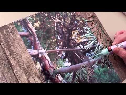 Vlog 8 scrapbooken haal je idee uit de foto