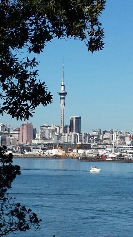 Auckland city (photo taken from Northcote Point)