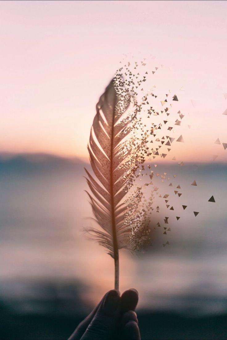 Feather Blowing In The Wind Have This As Your Wallpaper Fotografi Seni Fotografi Abstrak Pemandangan Abstrak