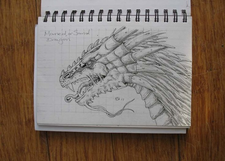 MANED, or SAND DRAGON A5, HB & Ink sketch