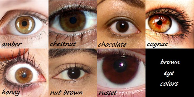 "Finally! I have an actual eye color - not just ""brown"" ;)"
