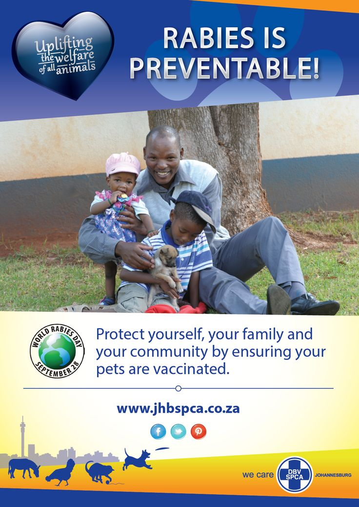 WORLD RABIES DAY - 28 SEPTEMBER 2016  *Johannesburg SPCA will be offering Free Rabies vaccinations during 26 September - 1 October, for all dogs and cats that are due for their annual Rabies Vaccination / or haven't had a rabies vaccination at NO CHARGE at our premises in Reuven.*
