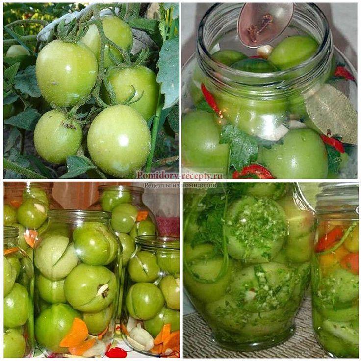 Зеленые помидоры без стерилизации. Лучшие рецепты с фото