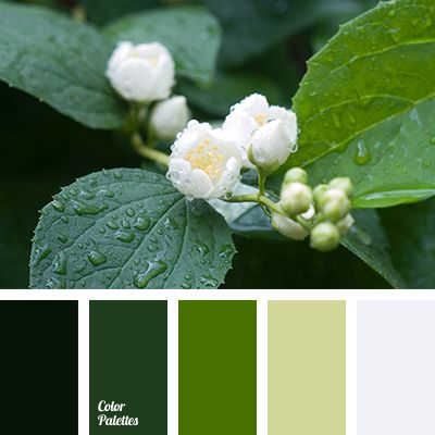 Color Palette #3008 | Color Palette Ideas | Bloglovin'