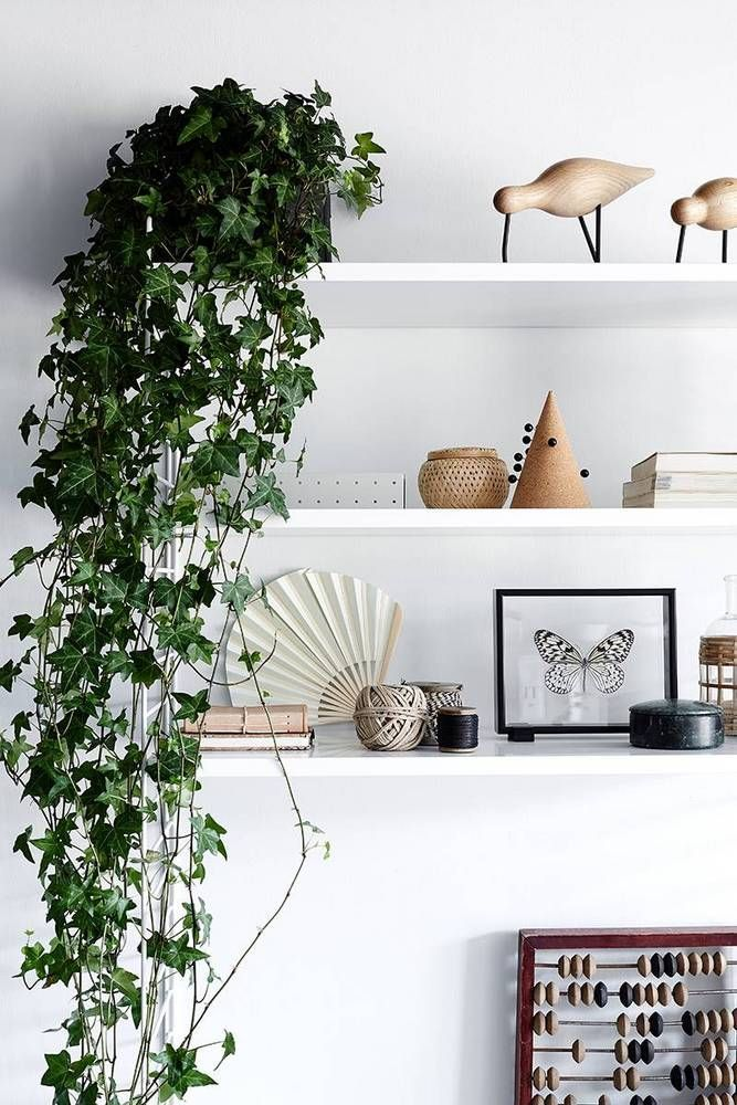 sf girl by bay white open shelving with plant