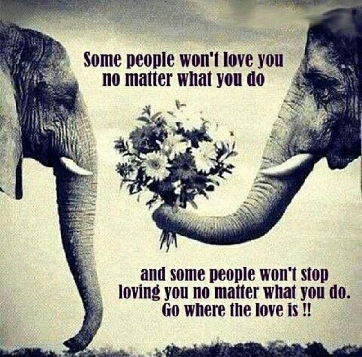 Go where the love is!