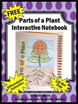 FREE Plant Parts Interactive Notebook Lift the Flaps Activity