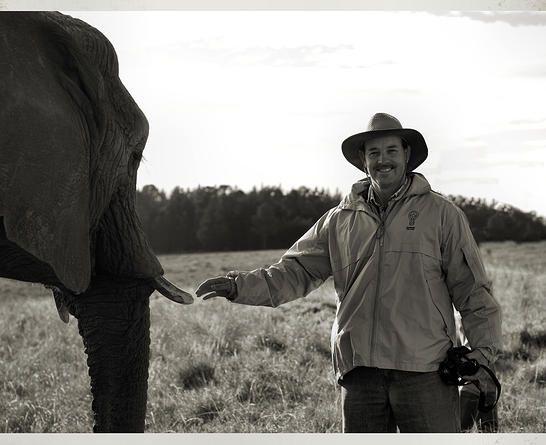Wedding Photography, Photographers Jeffreysbay, Knysna Elephant Park  DHPhotography Jeffrey's Bay