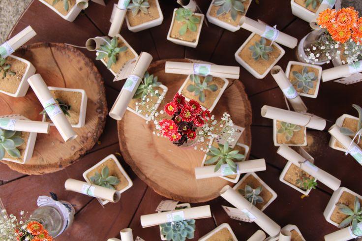 Suculentas wedding caseteja colombia
