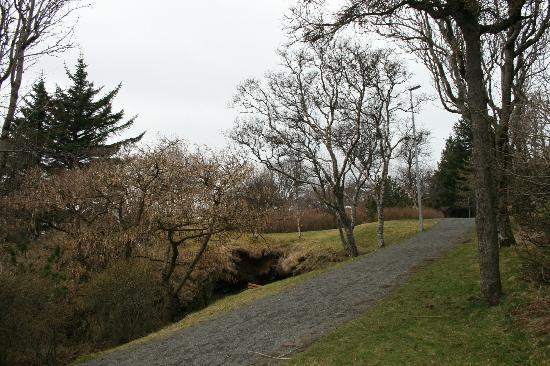 Hellisgerdi Park