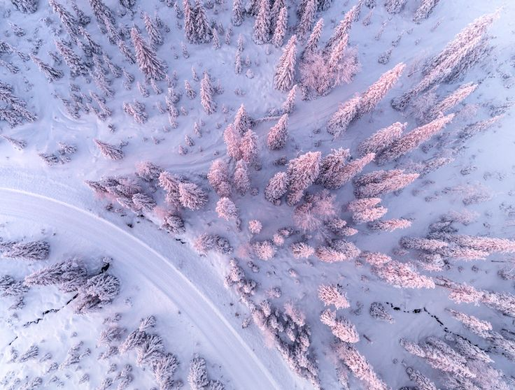 Gorgeous Aerial Pictures of a Snowy Forest in Finland – Fubiz Media
