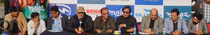Santosh Mudgal, Shakti Soni, Ravindra Singh, Dr.Madih, Shakeel Akhtar, Talat Aziz, Manu Prashant Wig, Pankaj Goyal, Harjeet Singh at d Majaz event by Dream Merchant Films & Bluefox Motion Pictures