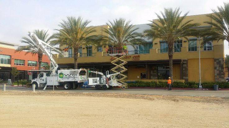 http://www.bowiebanc.com/tree-removal-in-riverside-county-ca/  We offer residential and commercial tree service in Temecula, and work with all major insurance companies to offer you tree care, tree cutting service in Temecula, tree clearing, tree trimming in corona, tree removal and land cleaning services.