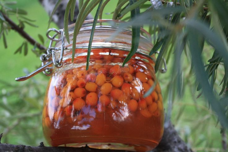 Sea Buckthorn in honey our newest experiment.