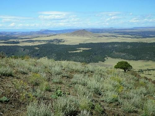 Capulin High Point View