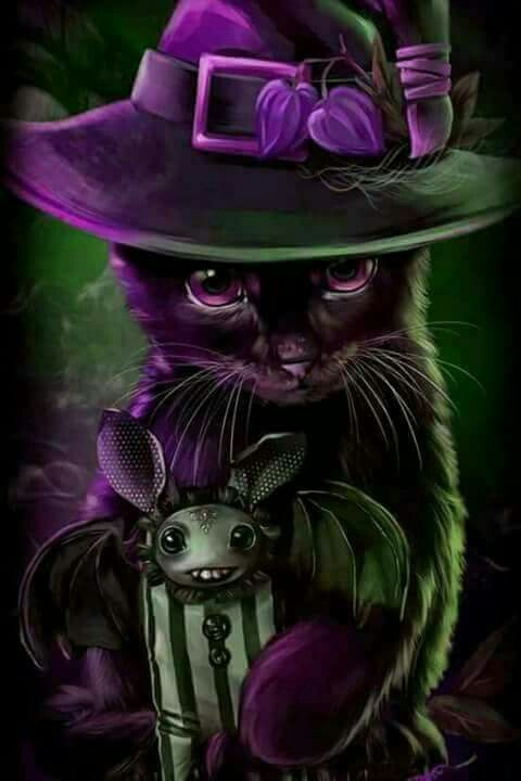 Halloween Kitty in Black & Purple