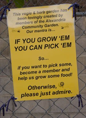Garden Sign Ideas creative garden sign ideas and projects Vandalism Signs For Community Gardens Google Search