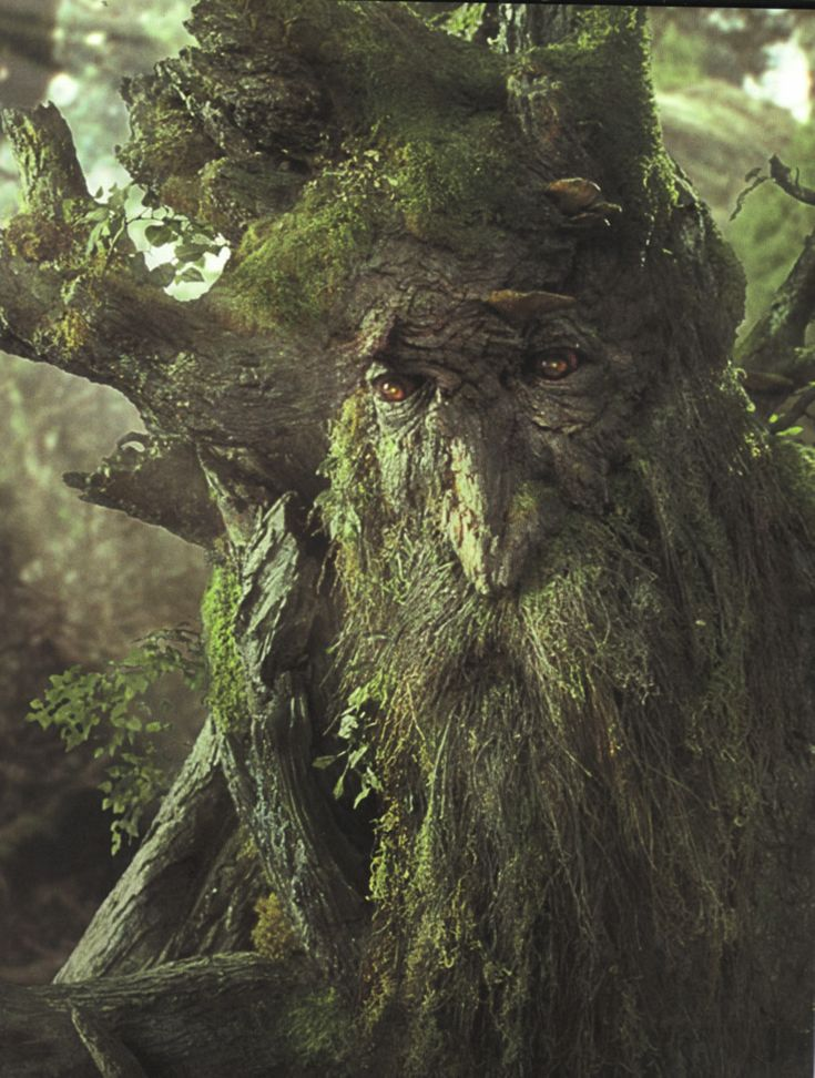 Treebeard, an Ent.  Ents are a race of beings in J. R. R. Tolkien's fantasy world Middle-earth who closely resemble trees. They are similar to the talking trees in folklore around the world. Their name is derived from the Anglo-Saxon word for giant.  They are ancient shepherds of the forest