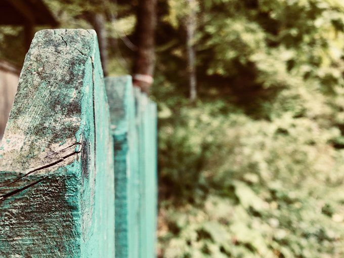 Fence in raw nature by Ephy on @creativemarket