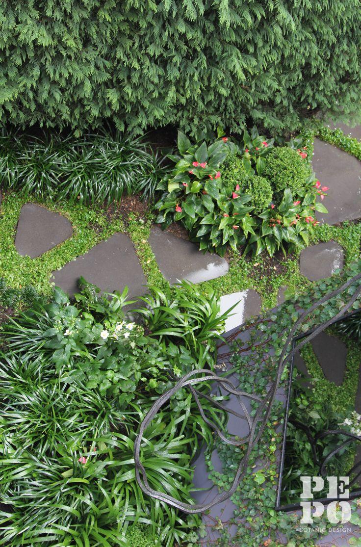 Hidden Festival of Outdoor Design 2014 Raising money for Moorambilla Voices Paddington courtyard garden By Pepo Botanic Design