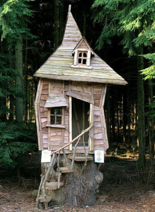 Hawaii Slanted House Design: 40 Best Tree House Images On Pinterest