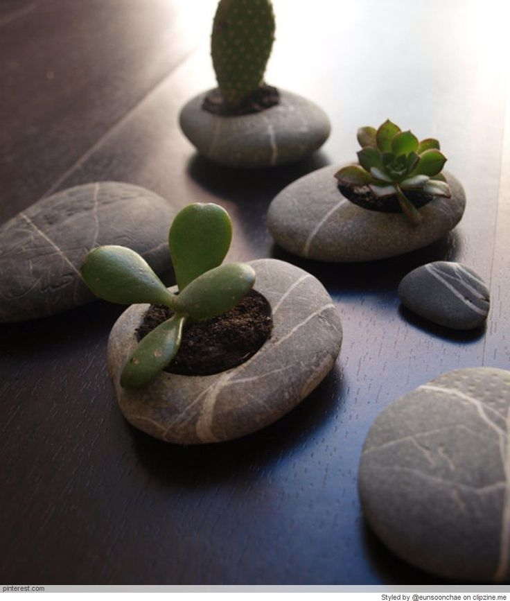 Drill a hole in a large pebble or rock using a diamond core drill (https://www.eternaltools.com/diamond-core-drills) and fill with soil and succulents or air plants - such a lovely idea!