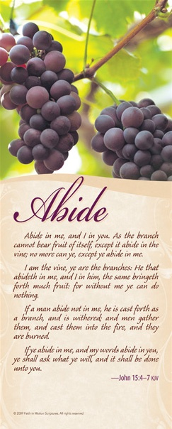 Abide in Jesus /BIBLE IN MY LANGUAGE