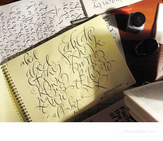 http://www.flickr.com/photos/m-marina/6726385731/  A calligraphy practice journal
