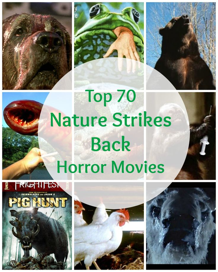 Top 70 Nature Strikes Back Horror Movies / Best Horror Movies with Killer Creatures / Horror Films with Dangerous Animals (Cujo, Frogs, Grizzly, Blood Lake, Alligator, Monkey Shines, Pig Hunt, The Food of the Gods, White Buffalo, Kingdom of the Spiders, Them! etc)